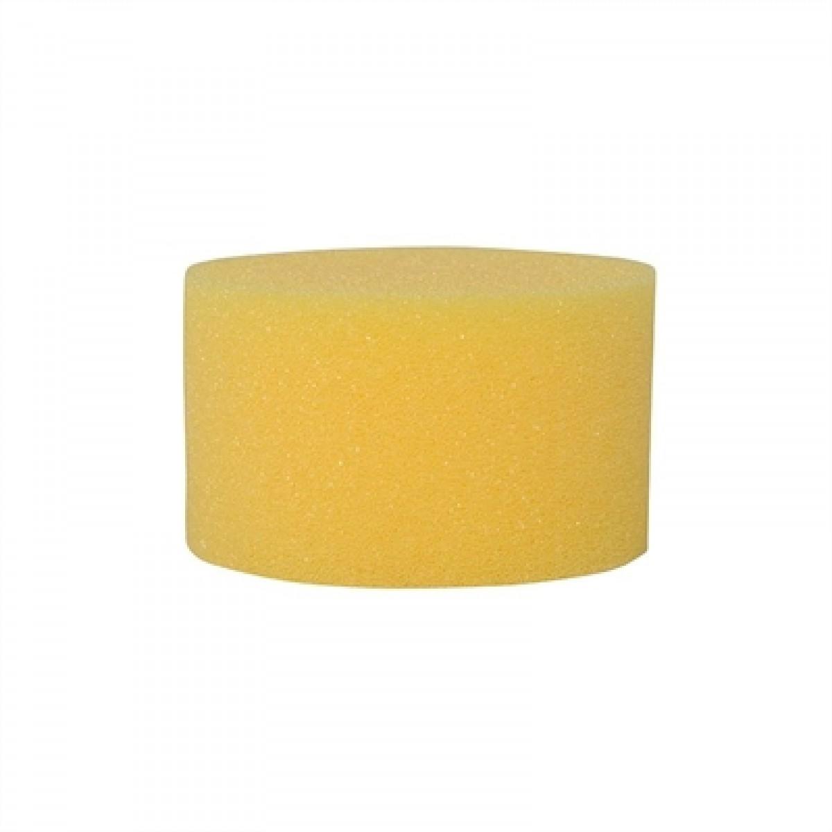 Lille rund gul Svamp