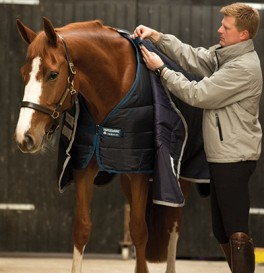 HorsewareLiner400gramNavy-20