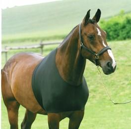 HorseGuardUndertrje-20