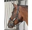 Rider by Horse Platinum Nordic grime