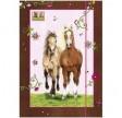 Heste Mappe